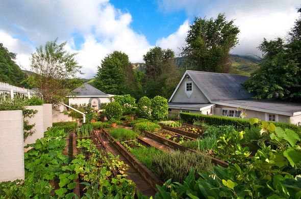 cleopatra-mountain-farmhouse-vegetable-garden-590x390